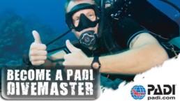 Padi divemaster certification - master scuba diver