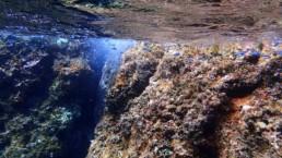 padi deep diver - Santorini volcanic reef