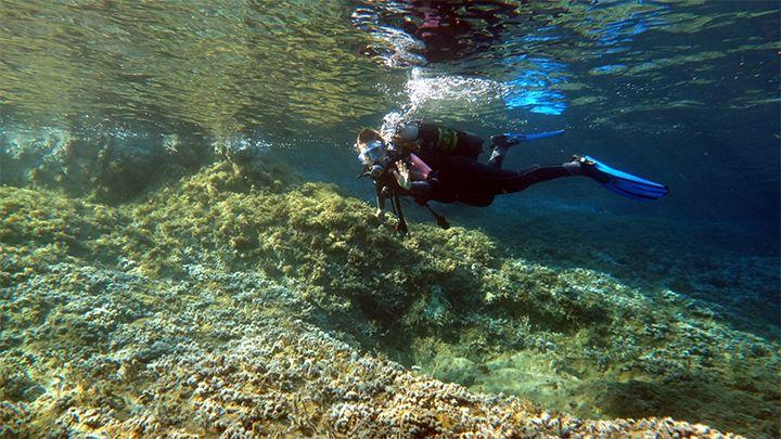 Zero to hero diving course