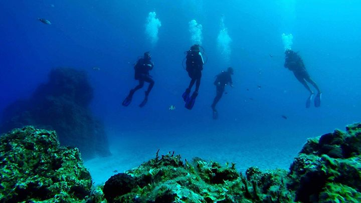 From zero to hero diving course