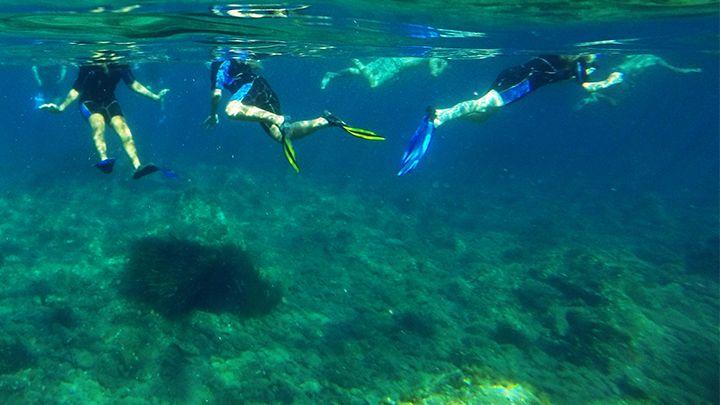 snorkel diving in santorini