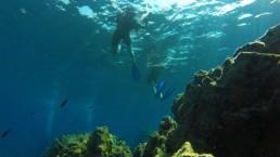 snorkel diving in santorini volcanic reefs