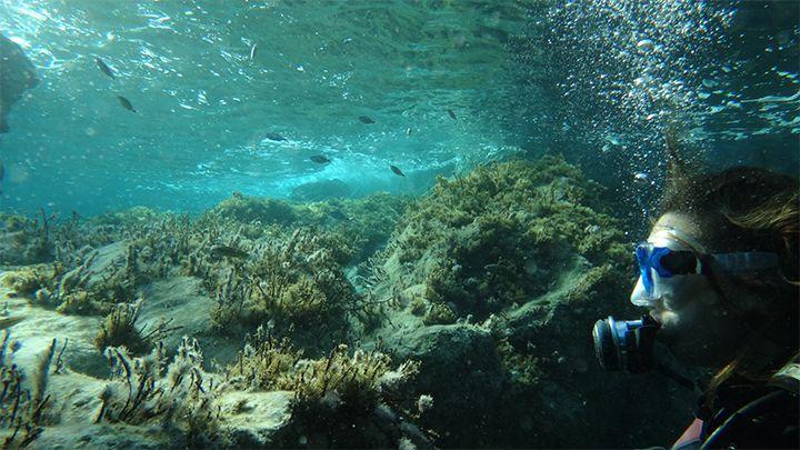 Santorini navys waterworld santorini private tours snorkeling spots