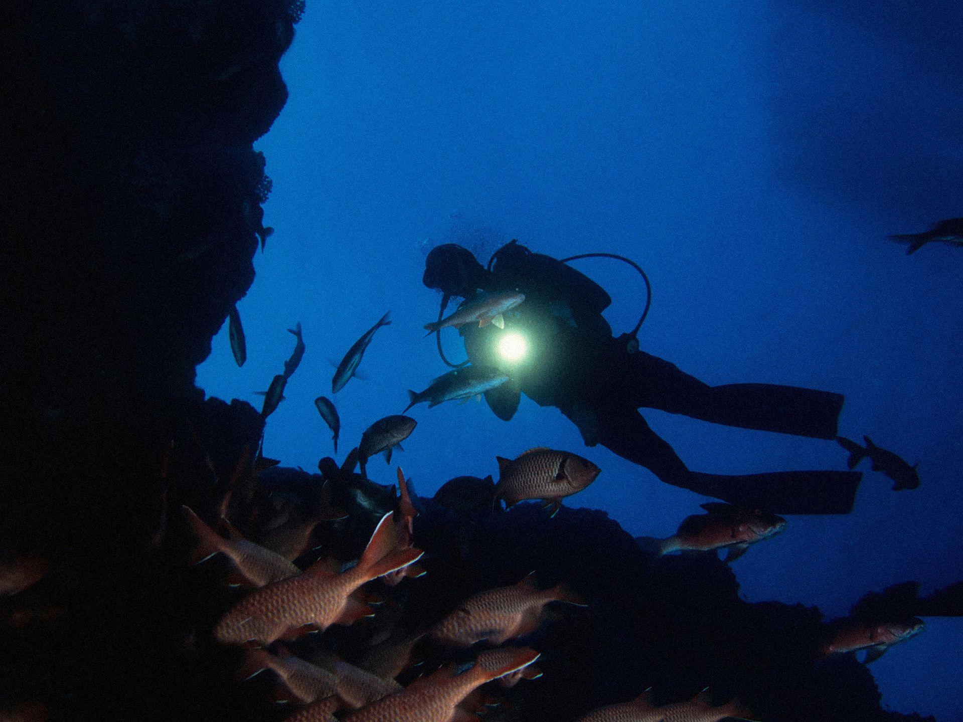 Santorini scuba night dive santorini